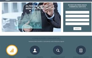 consulente vendita 300x190 Progetti Web Marketing